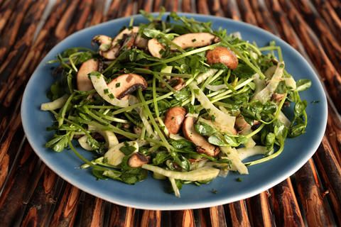 More like this: mushroom salad , fennel and sprouts .