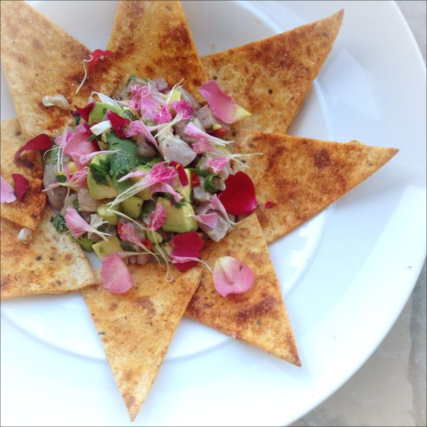 Edible flower chips: TUNA CEVICHE. | Cooking & Drinking With Flowers ...