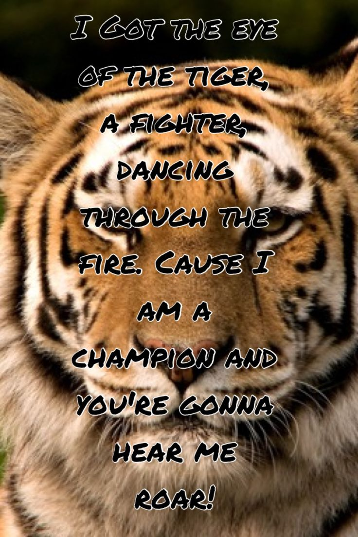 Katy Perry Roar Quotes | www.imgkid.com - The Image Kid ...