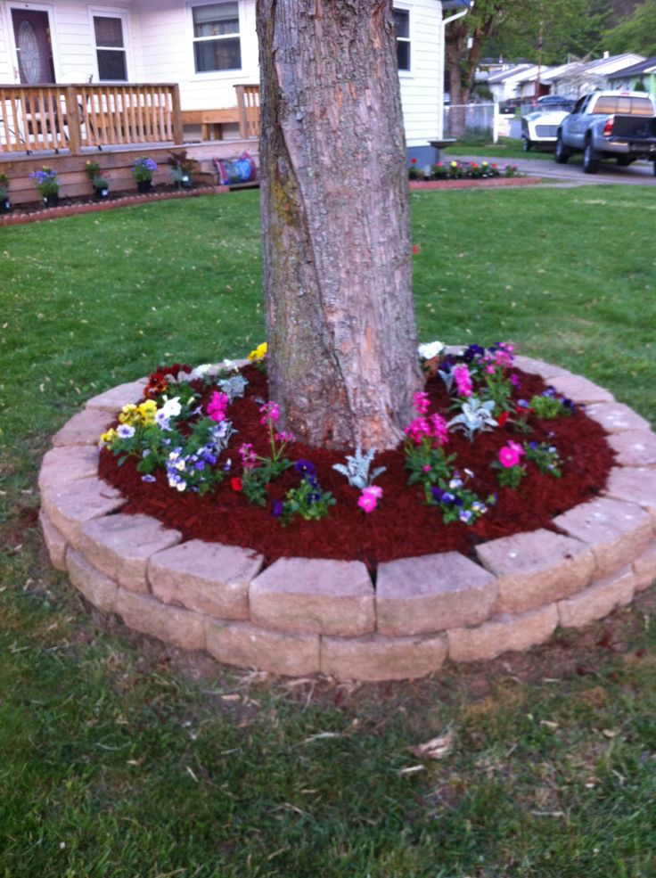 Flower bed around tree garden green thumb pinterest for Flowers for flower beds