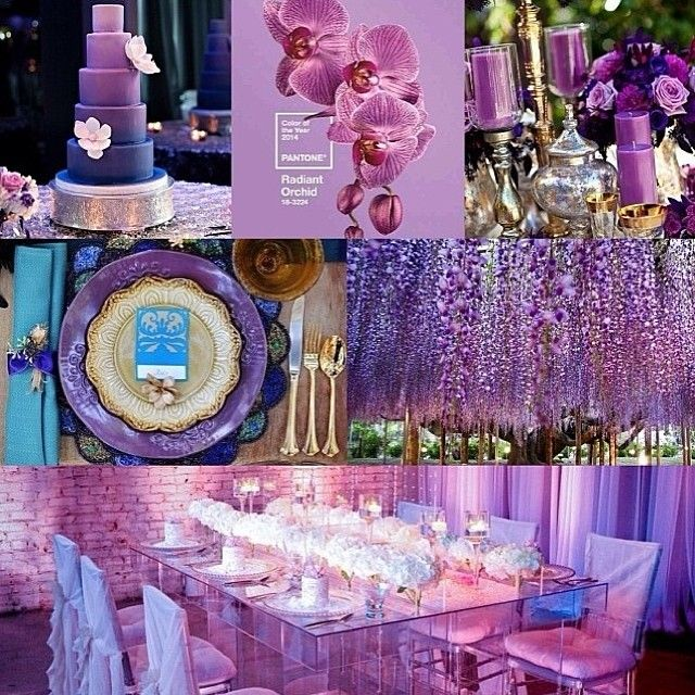 Wedding a la Radiant Orchid