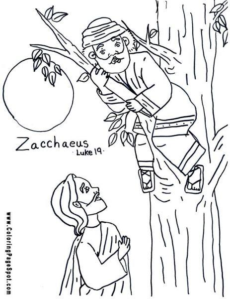 zaccheus coloring pages - photo#30