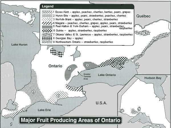 Major fruit producing areas of ontario vegi gardening for S bains media production