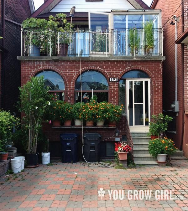 Backyard Urban Garden Toronto :  at space creatively, like the owners of this garden in urban Toronto