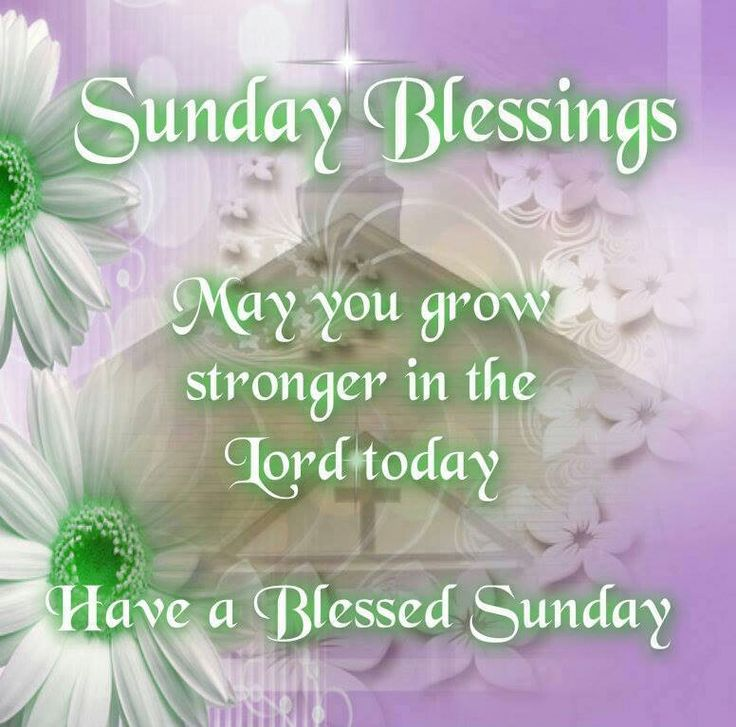 Sunday Blessing   Daily Quotes   Pinterest