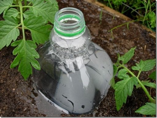 The 'system' is super simple. All we have to do is grab some 2-liter plastic bottles, punch 2 holes into the sides and 2 into the bottom, and plant said bottles next to our plants. Fill them with water and our plants will get that slow watering they prefer. For more information about the project, visit Fine Craft Guild.