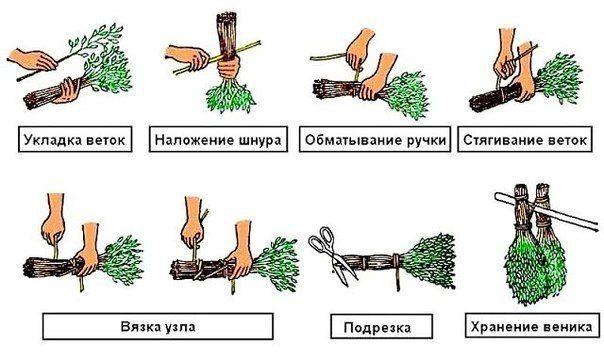 Как вязать веники для бани своими руками 835