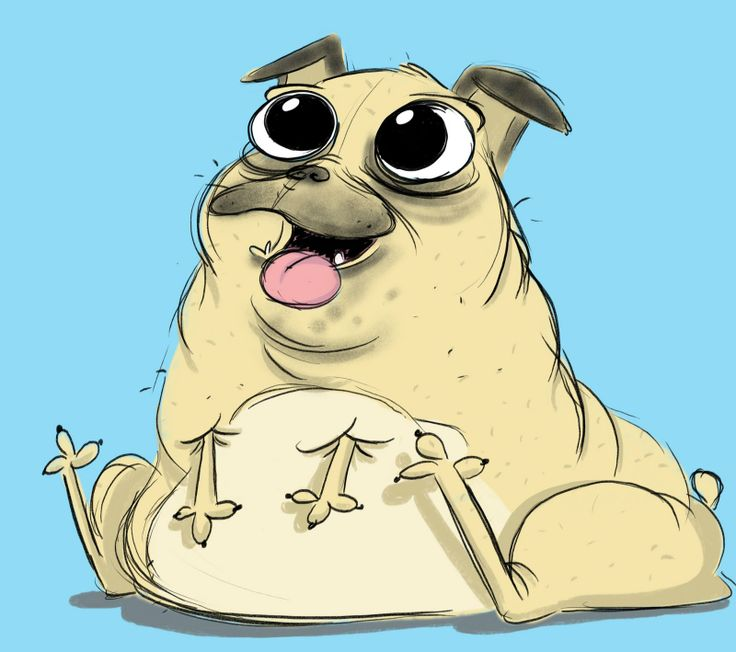 Pug Face Line Drawing : Pug face drawing drawings for friends nd family