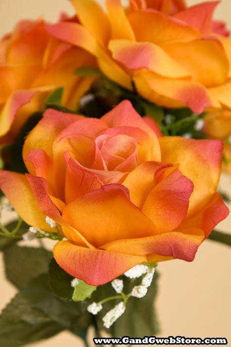 Vein Rose Orange (Circus Rose)