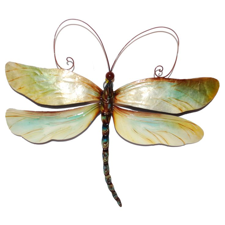 Outdoor Wall Decor Dragonfly : Metal and capiz dragonfly wall decor philippines