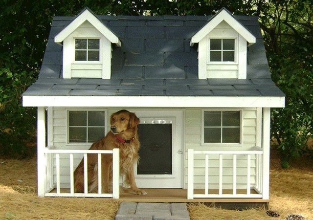 Cool Dog Houses For Large Dogs Pictures