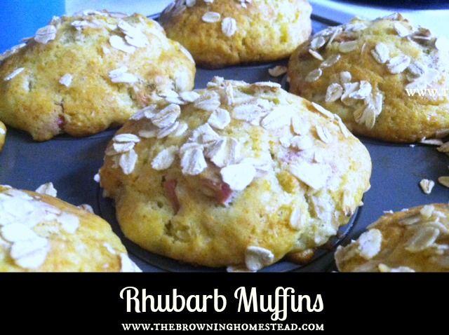 Rhubarb Muffins | Yummy Dessert Recipes | Pinterest