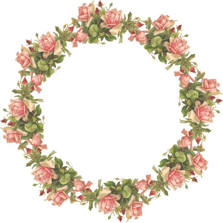 Крылья Whimsy: розовые розы Венок - Екатерина Klein - PNG (прозрачный фон) - бесплатно для личного использования