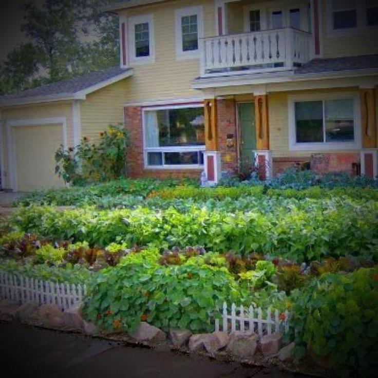 edible front yard garden pinterest