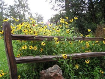 Country landscaping ideas gardening pinterest for Country landscaping ideas