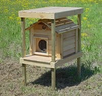 Outside Cat House - 17 Inch Cedar Cat House with Platform & Loft ...