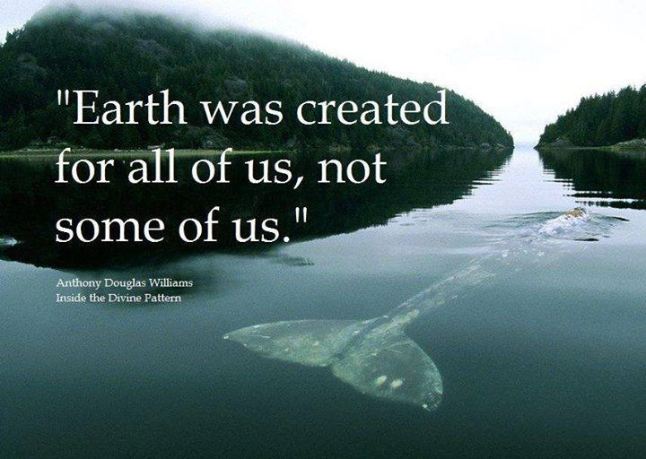 quotes about planets - photo #46
