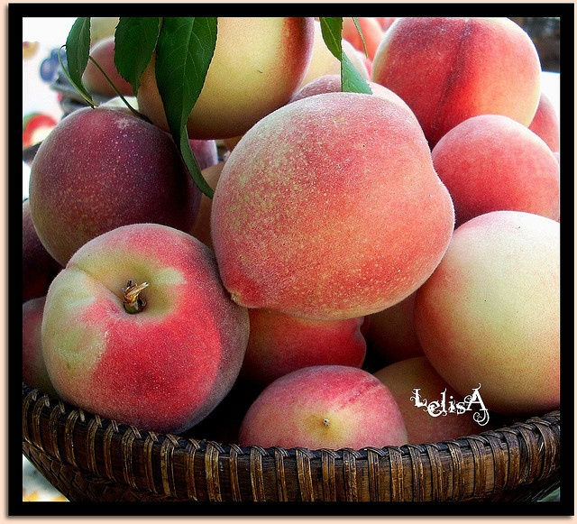 perfect peaches in basket | Peaches | Pinterest