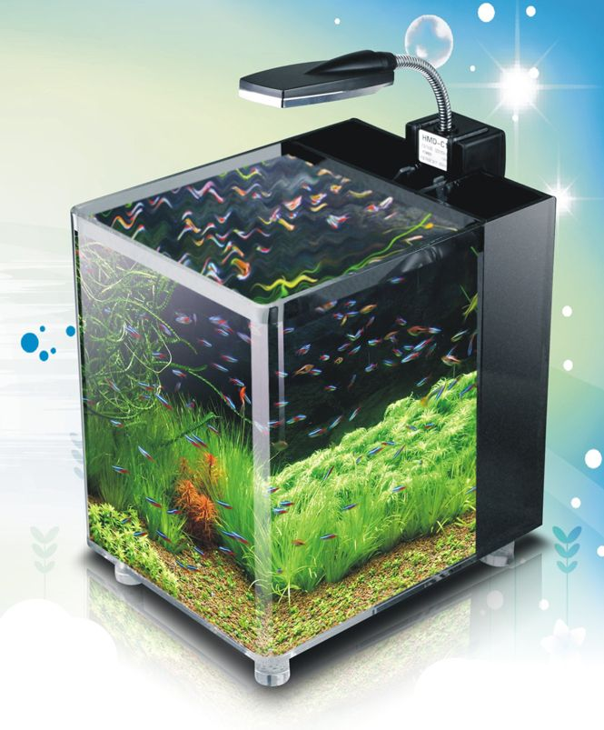 Acrylic nano cube aquarium tropical coldwater fish tank for Aquarium nano cube