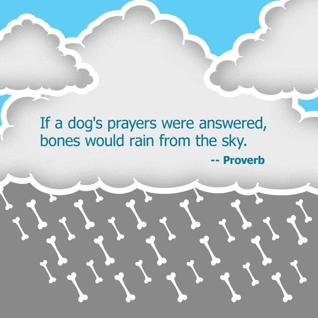Dog in heaven prayer submited images