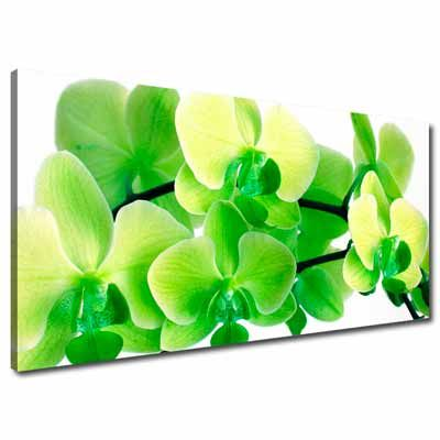 Lime Green Large Canvas Wall Art Flowers So Sub Lime