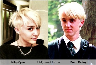 Draco Malfoy Miley Cyrus Memes Miley Cyrus And Draco Malfoy
