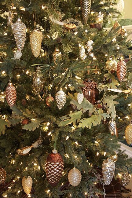 Pine cone ornaments christmas pinterest for Pine cone xmas tree decorations