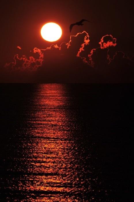 Red sky at morning...