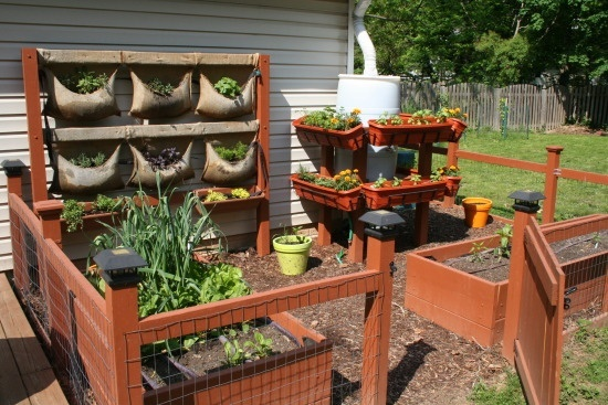 Suburban Backyard Farming : suburban farming ideas  Google Search I like the burlap bag use