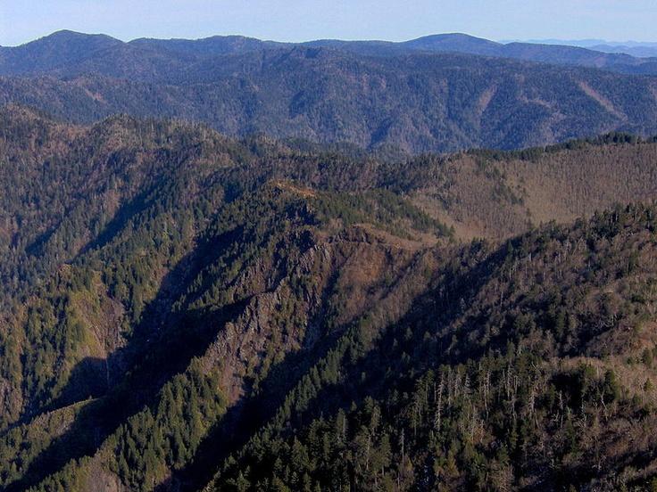 Mt. Kephart, Great Smokey Mountains Nat'l Park.