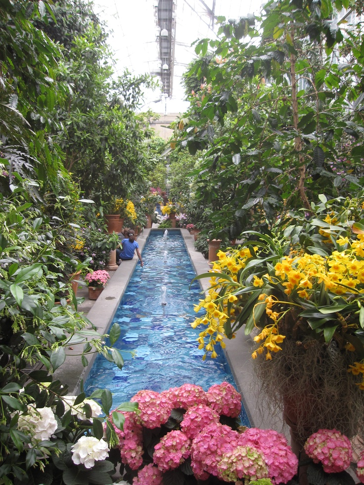 United states botanic garden dc where i 39 ve been pinterest for Botanical gardens dc christmas