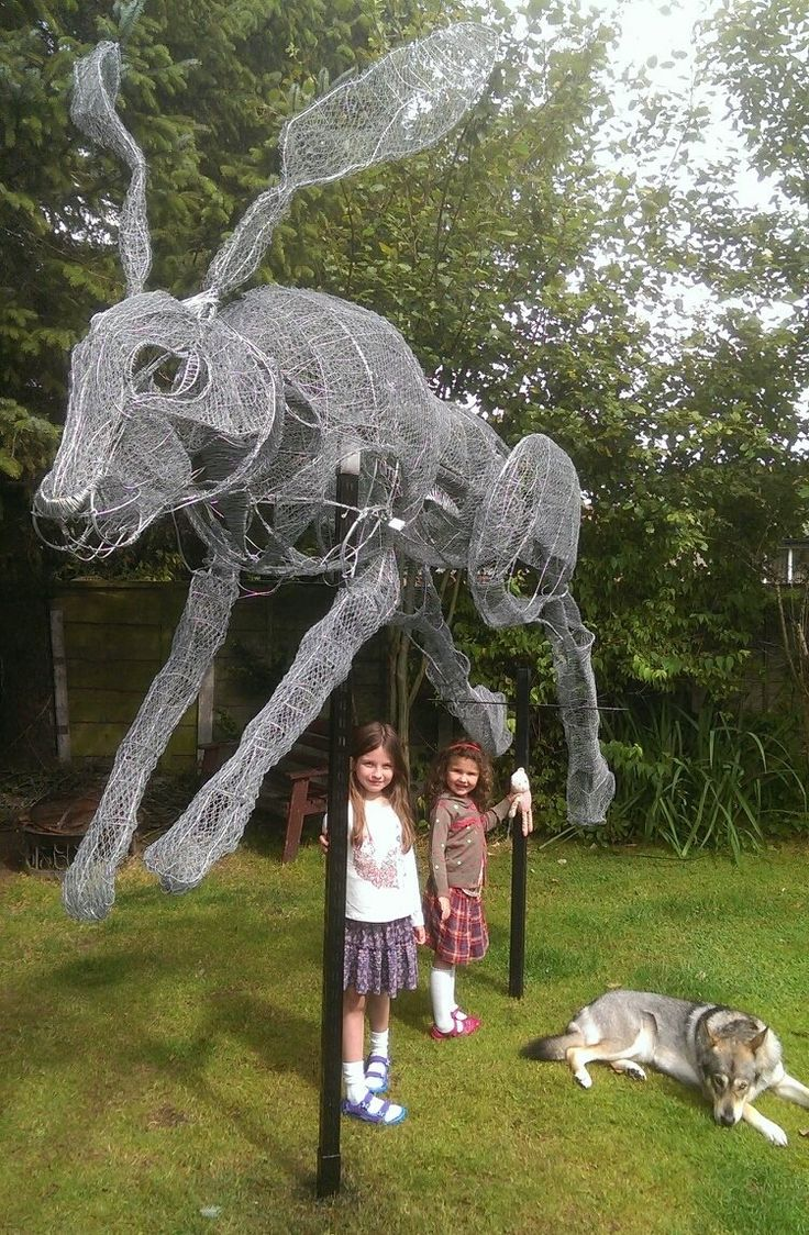 Wire hare now on displ...
