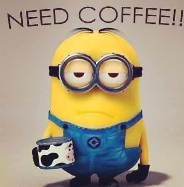 Need Coffee Funny Meme : Need coffee minion humor pinterest