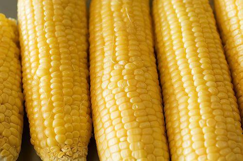 Fresh Corn Casserole | Recipe