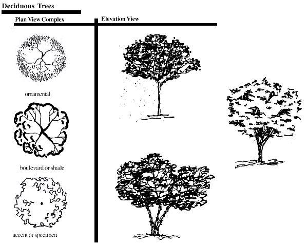 21 brave Landscape Garden Design Symbols izvipicom