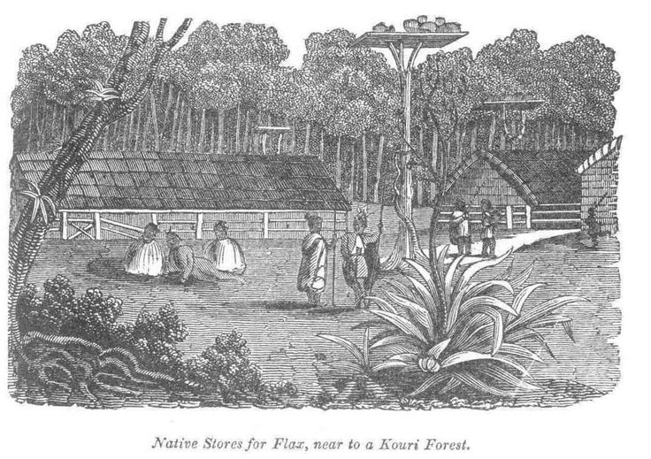Natives stores of flax