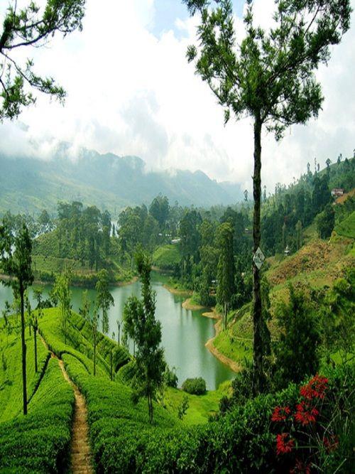 Sri Lanka. Wow. Never thought I'd put Sri Lanka on my vacation spots list. Gorgeous.