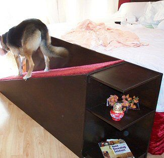 Dog Ramp For Sofa Ramps Bed Open Travel Thesofa