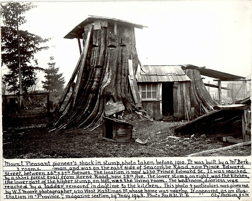 'Three-Room Stump Home' of Vancouver, BC, taken before 1910 (via Leedman)