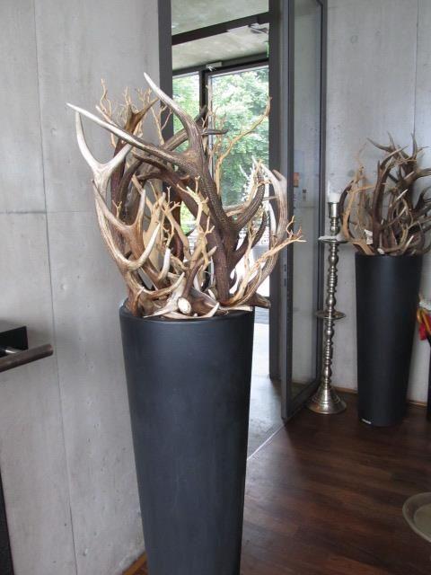 Deer antler decoration hunting decor pinterest for Antler decoration