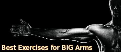 best exercises for big arms