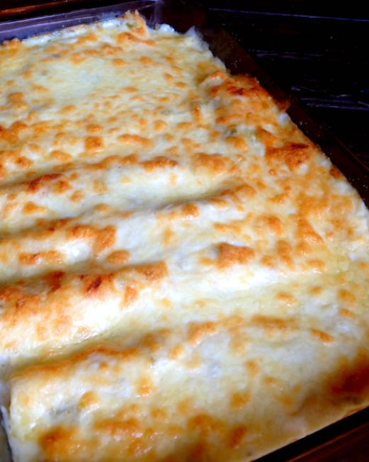 Chicken Enchiladas with Sour Cream White Sauce – The BEST Enchiladas EVER!