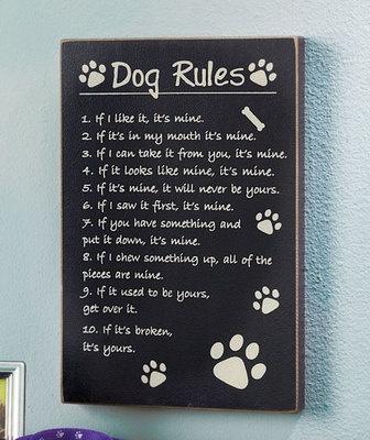 Funny Dog Rules