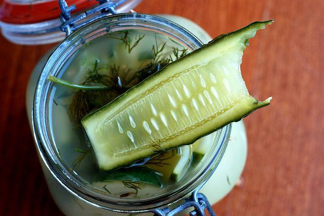 """... Crisp Refreshing Homemade Fermented Kosher Dill """"Half Sour"""" Pic..."""
