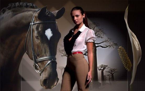 Les plus beaux chevaux du monde scenes from mountains of - Les plus beaux interieurs du monde ...