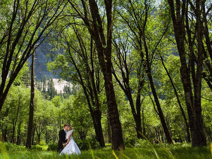 Yosemite Wedding Yosemite Wedding Pinterest