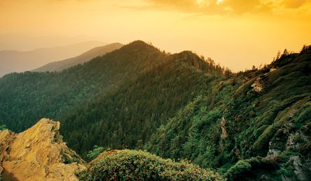 life photos national parks