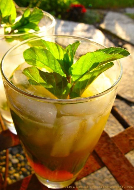 Iced Tea with Lime & Peppermint | Cafe Beverages | Pinterest