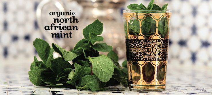 North African Mint (Organic) - cardamom, peppermint, ginger, green tea ...