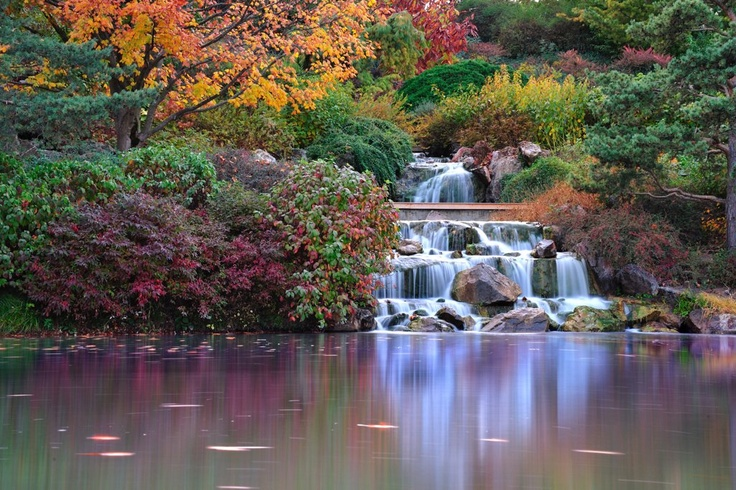 Pin By Monji Landscape Co On Our Fav S Japanese Gardens 400 x 300